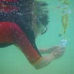 iPhoneの水中撮影
