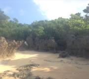 ココスビレッジ下の海