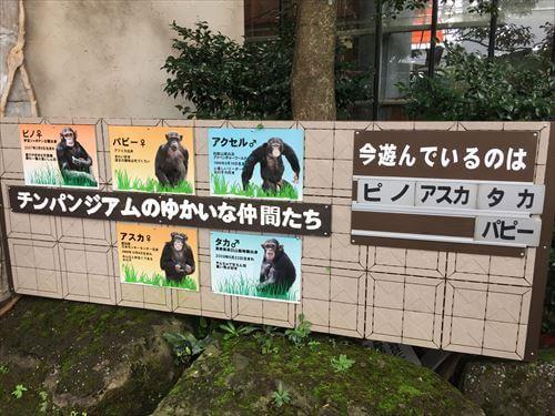 伊豆シャボテン公園のチンパンジー看板
