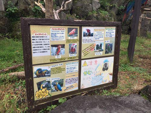 伊豆シャボテン公園のインコ看板