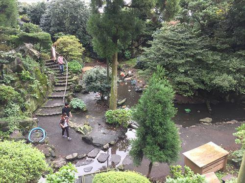 伊豆シャボテン公園のバードパラダイス