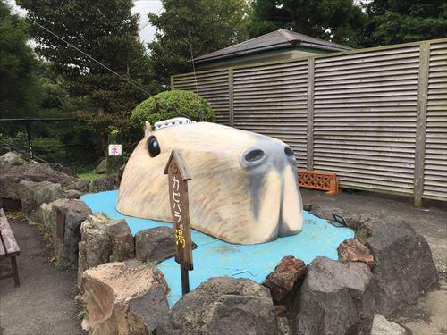 伊豆シャボテン公園のカピパラの湯