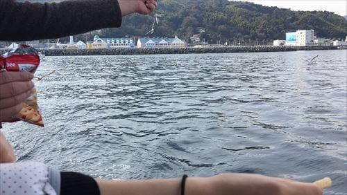 遊覧船ゆーみんフック号から見た海