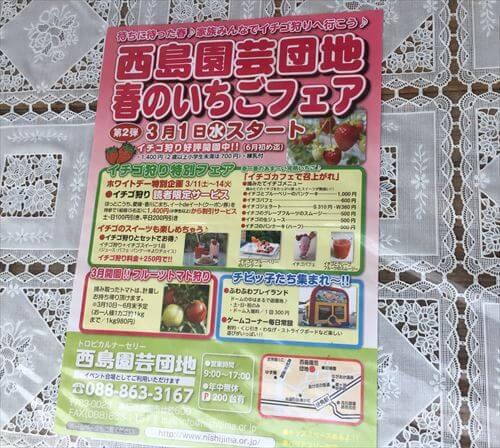 西島園芸団地春のいちごフェアパンフレット