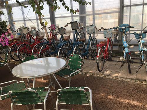 西島園芸団地のレンタル自転車