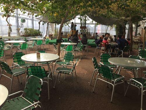 西島園芸団地のカフェテーブル