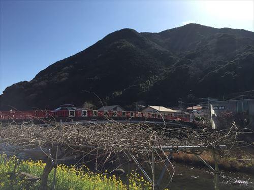 河津桜まつりの赤い橋