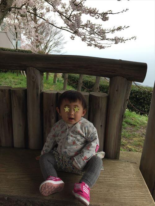 紫雲出山桜まつり-展望ベンチ