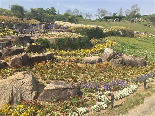 国営讃岐まんのう公園の花