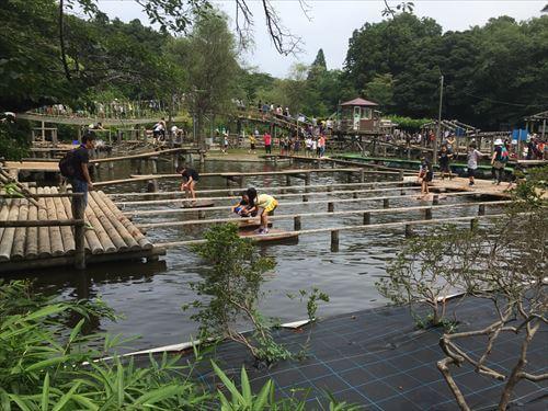 清水公園フィールドアスレチック-水上コース