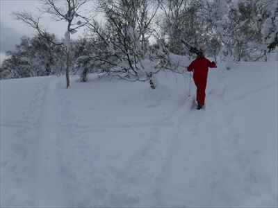 札幌国際スキー場のハイクアップコース