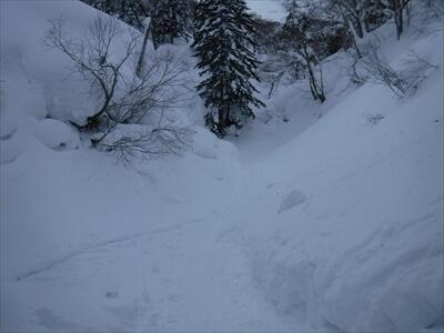 札幌国際スキー場のハイクアップコースからのパウダー滑走で沢に