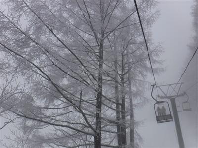 斑尾高原スキー場のリフトからの樹氷