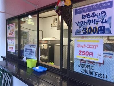 くりはま花の国コスモス館ソフトクリーム売り場