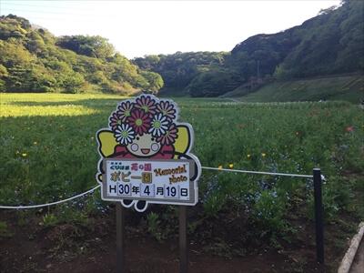 くりはま花の国の花看板