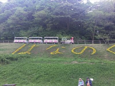 くりはま花の国を走る列車