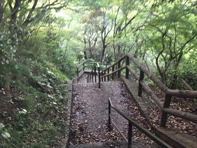 くりはま花の国の戻る道の階段