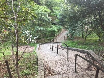 くりはま花の国の戻り道の階段