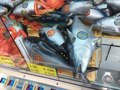 横須賀海辺の湯の大漁UFOキャッチャーアップ