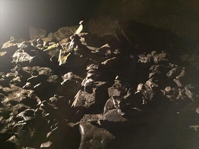日原鍾乳洞内の無数のお地蔵さん