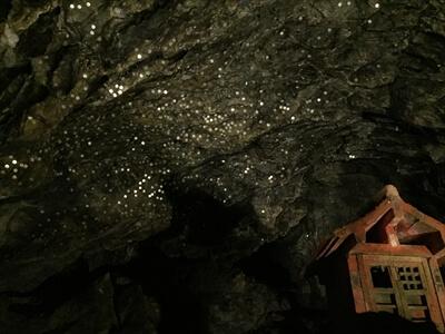 日原鍾乳洞内の十二薬師の上にキラキラ