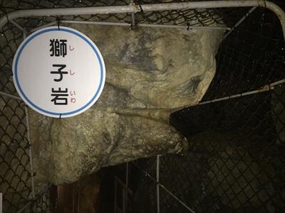 日原鍾乳洞内の獅子岩