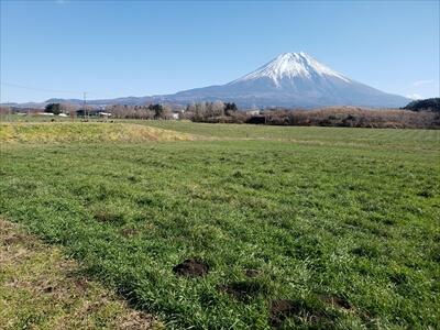 富士山の麓の景色